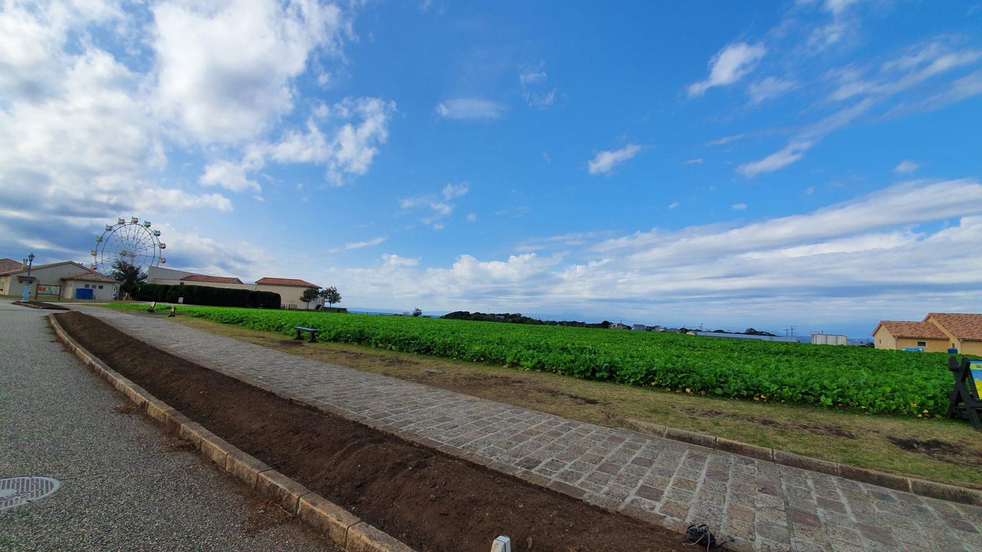 ソレイユの丘畑